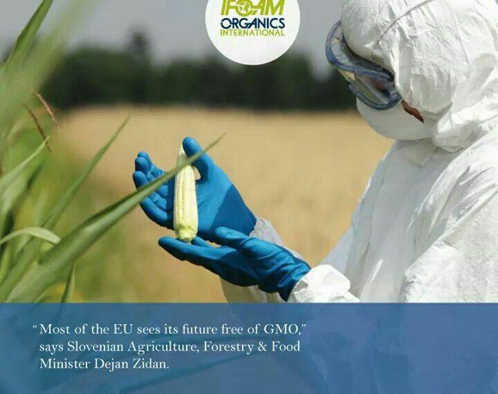 کشورهای اتحادیه اروپا، آینده عاری از محصولات دستکاری شده