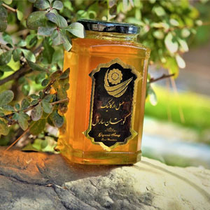 عسل گون سارال